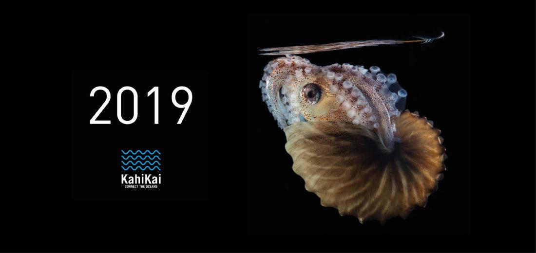 2019 Calendar Thumbnail-01